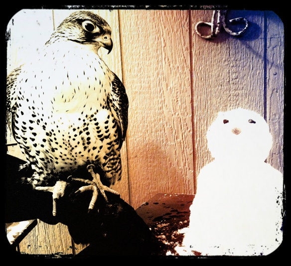 Boyce Daulton Lee Falcon Snowman Together